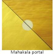 Mahakala Ascended Master Portal